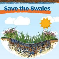 Save the Swales trifold lede illustration